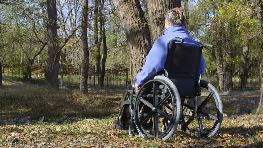Lady In Wheelchair - Services